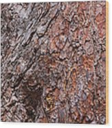 Tree Trunk Abstract Wood Print