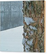 Tree Trunk Bark And River In Snowfall Wood Print