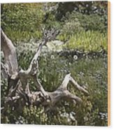 Tree Trunk In The Meadow Wood Print