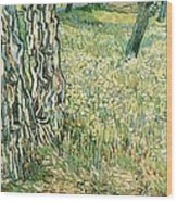 Tree Trunks In Grass Wood Print