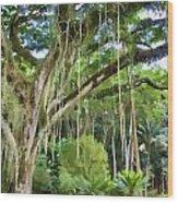 Tree-waimea Arboretum Wood Print