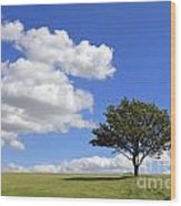 Tree With Clouds Wood Print
