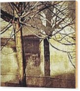 Tree With Shadows Wood Print by Mark Block