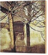 Tree With Shadows Wood Print