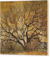 Tree Without Shade Wood Print