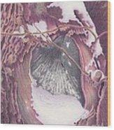 Treeheart Wood Print by Elizabeth Dobbs