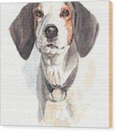 Treeing Walker Coonhound Wood Print