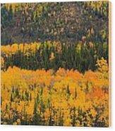 Trees Ablaze Wood Print