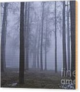 Trees Along Greenlake In Fog Wood Print