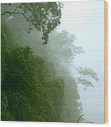 Trees Along The Boumba River Wood Print