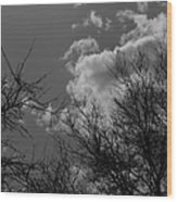 Trees And Clouds 3 Bw Wood Print