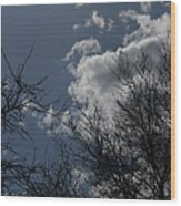 Trees And Clouds 3 Wood Print