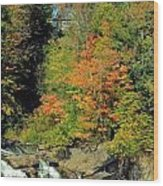 Trees And Falls Wood Print