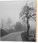 Trees And Fog Wood Print