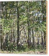 Trees And Knees Wood Print