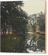 Trees And Lake Print Wood Print