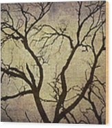 Trees Are The Lungs Of The World Wood Print