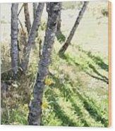 Trees At A Picnic Wood Print