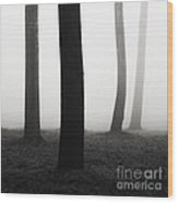 Trees Dancing In The Fog Wood Print