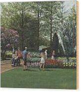 St. Louis Botanical Garden Trees Wood Print