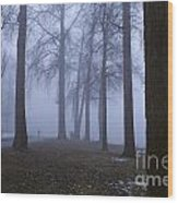 Trees Greenlake With Man Walking Wood Print