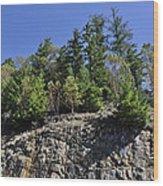 Trees Growing On The Edge Wood Print