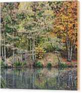 Trees In Autumn Wood Print