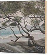 Trees In Costa Rica Wood Print
