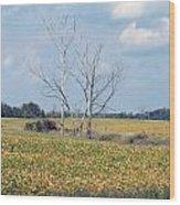 Trees In Field Wood Print