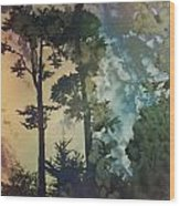 Trees In Golden Gate Park Wood Print