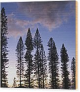Trees In Silhouette Wood Print