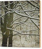 Trees In Snow Wood Print