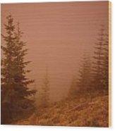 Trees In The Fog Wood Print