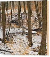 Trees In The Forest In Winter Brown And Orange Leaves Wood Print