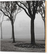 Trees In The Midst No. 06 Wood Print