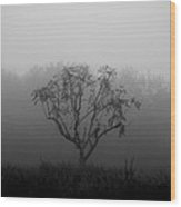 Trees In The Midst No. 08 Wood Print