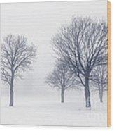 Trees In Winter Fog Wood Print