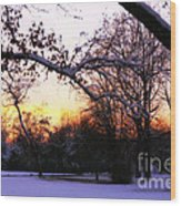 Trees In Wintry Pennsylvania Twilight Wood Print