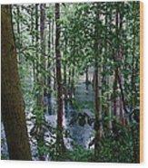 Trees Wood Print by Nelson Watkins