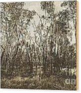 Trees Of Ashburn Wood Print