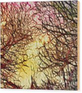 Trees Of The Four Seasons Wood Print
