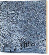 Trees Of Winter Wood Print