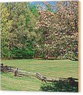 Trees On A Field, Davidson River Wood Print