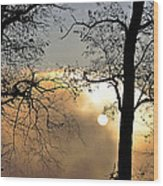 Trees On Misty Morning Wood Print