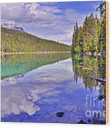Trees Reflected At Valley Of The Five Lakes Wood Print