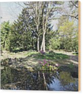 Trees Reflection In The Pond Wood Print