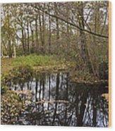 Trees Reflection Wood Print