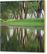 Trees Reflection On The Lake Wood Print by Heiko Koehrer-Wagner