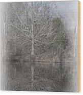 Tree's Reflection Wood Print