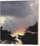 Trees Salutation To The Sun Wood Print